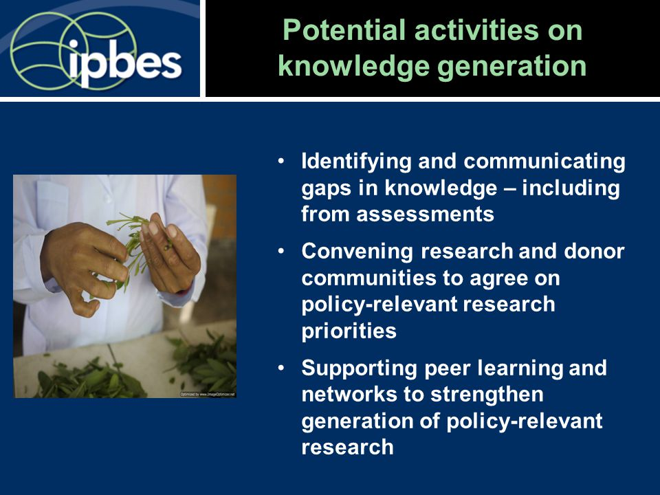 Potential activities on knowledge generation Identifying and communicating gaps in knowledge – including from assessments Convening research and donor