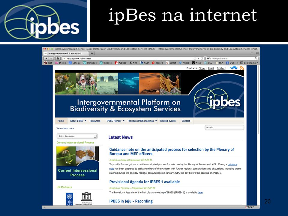 ipBes na internet 20