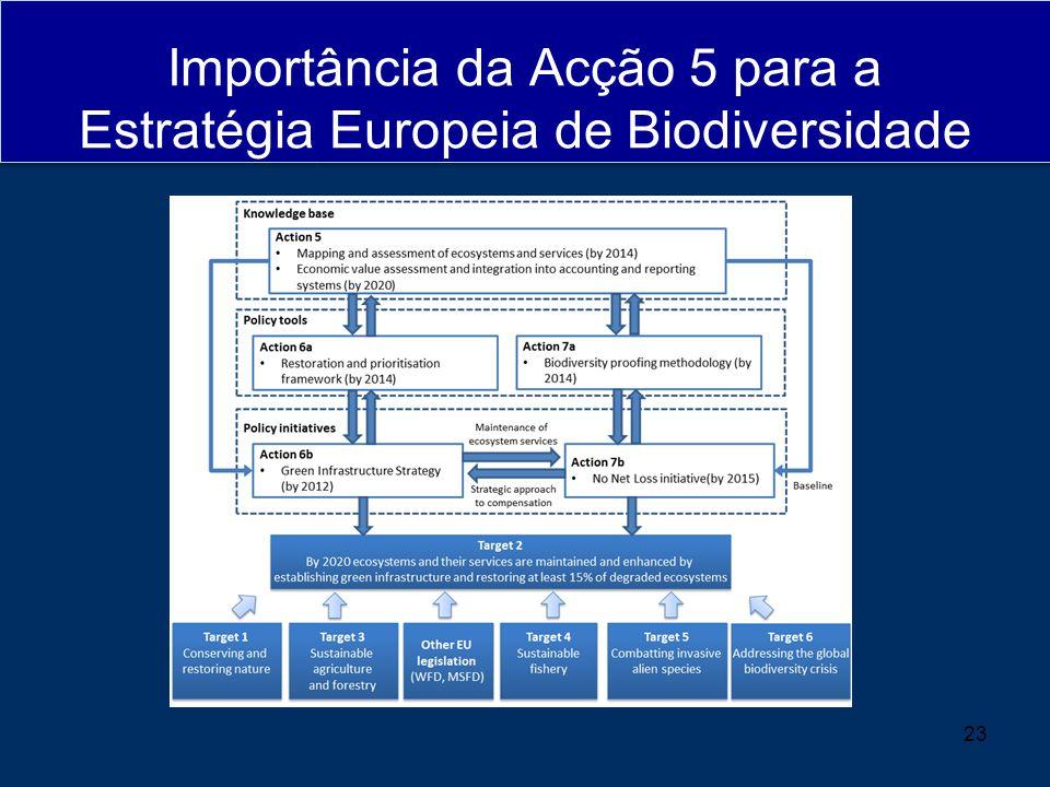 Importância da Acção 5 para a Estratégia Europeia de Biodiversidade 23