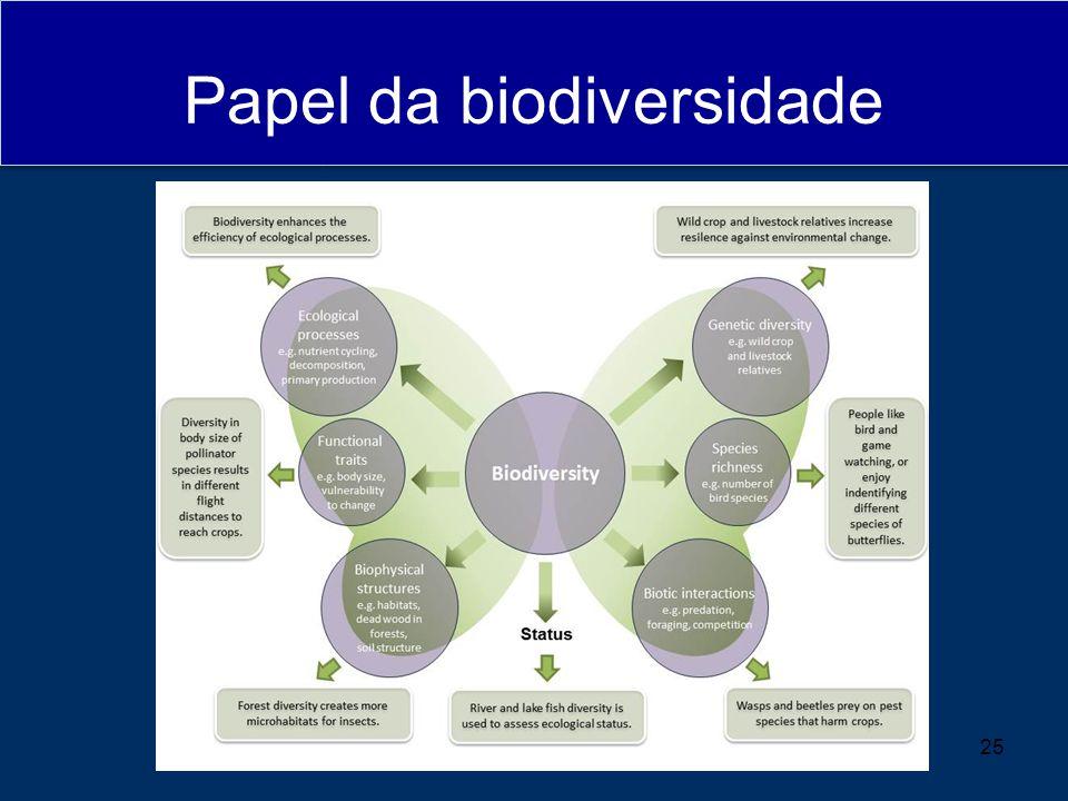 Papel da biodiversidade 25