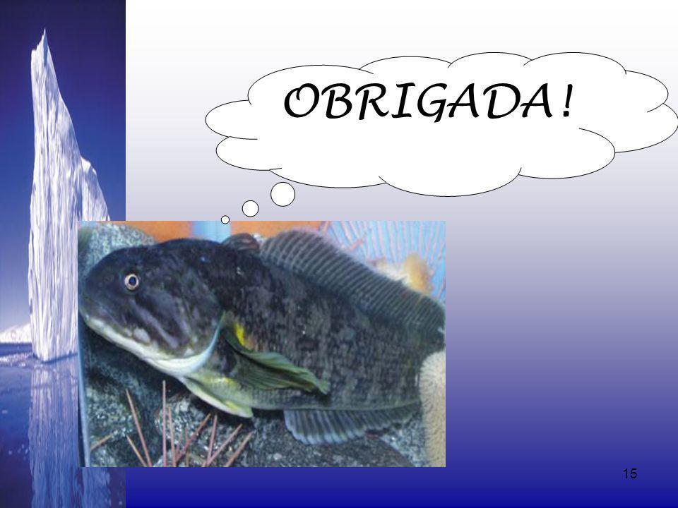 08/06/201415 OBRIGADA!