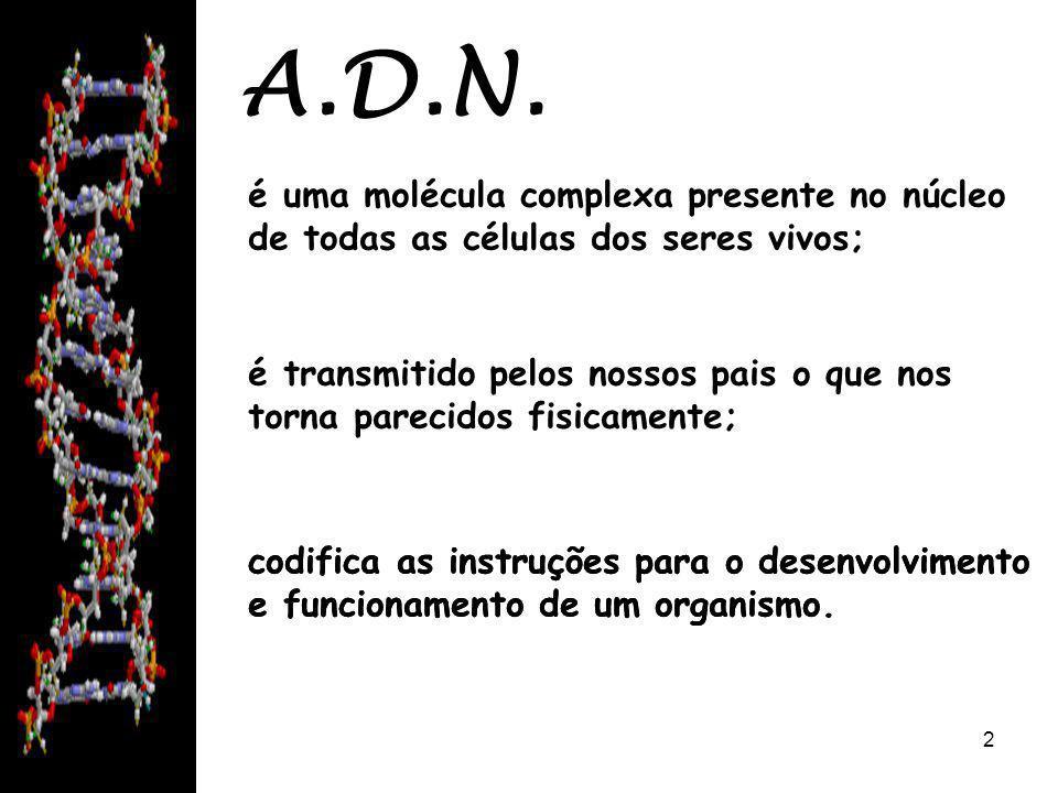 08/06/20142 A.D.N. codifica as instruções para o desenvolvimento e funcionamento de um organismo.