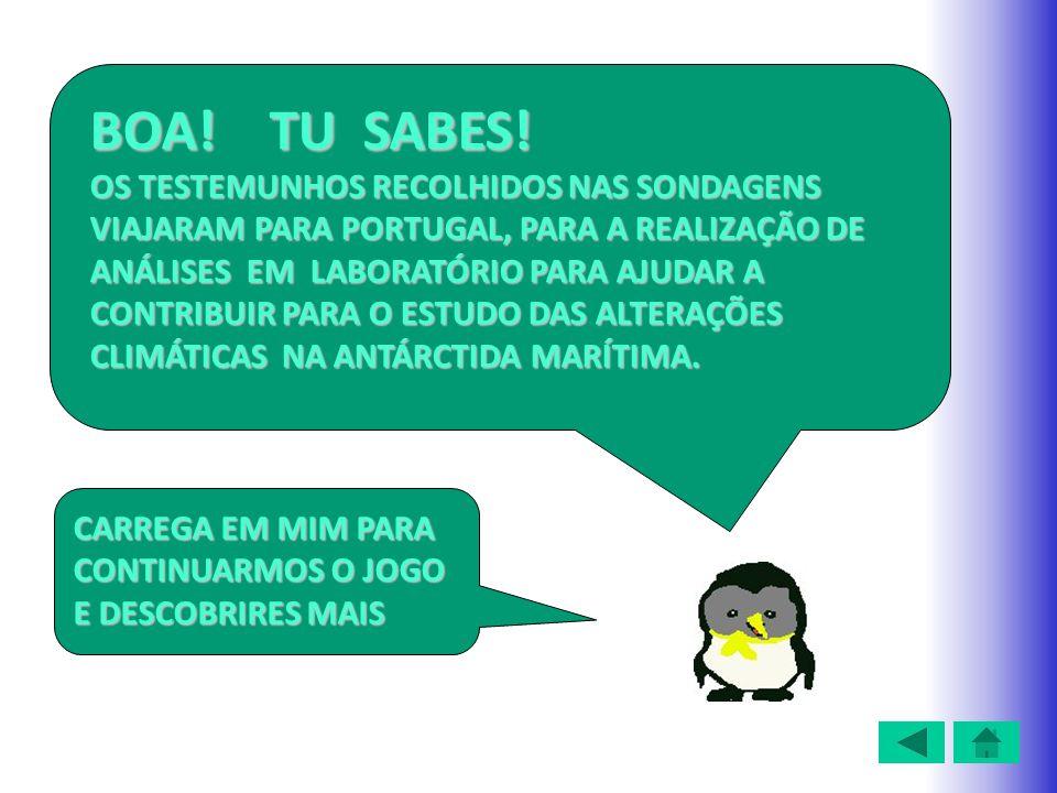 BOA! TU SABES! OS TESTEMUNHOS RECOLHIDOS NAS SONDAGENS VIAJARAM PARA PORTUGAL, PARA A REALIZAÇÃO DE ANÁLISES EM LABORATÓRIO PARA AJUDAR A CONTRIBUIR P