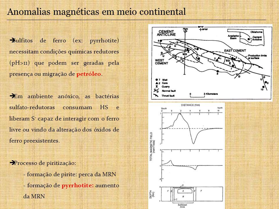6. Magnetismo ambiental Poluição atmosférica Ambientes sedimentares Paleoclima ASM com ferrofluido