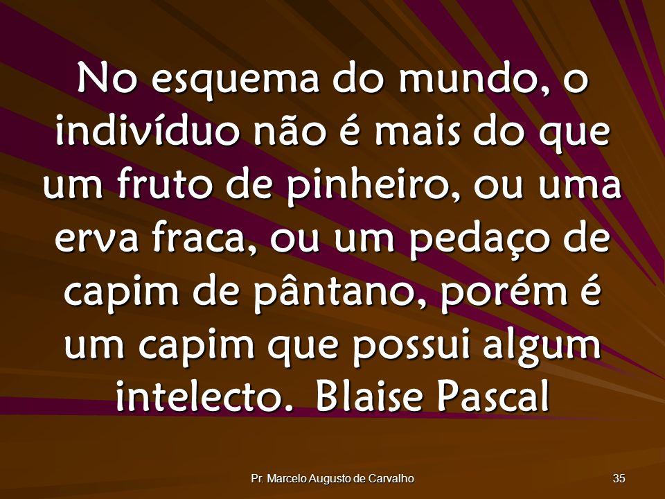 Pr. Marcelo Augusto de Carvalho 35 No esquema do mundo, o indivíduo não é mais do que um fruto de pinheiro, ou uma erva fraca, ou um pedaço de capim d