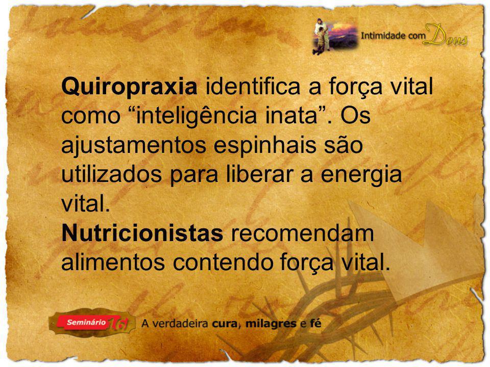 Nutricionistas recomendam alimentos contendo força vital.