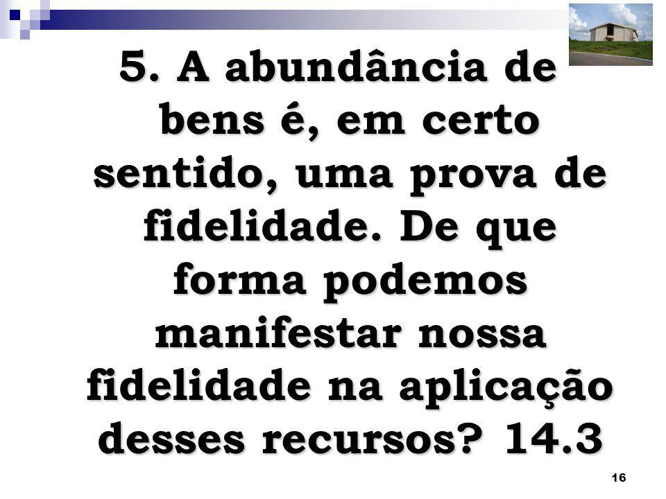 16 5. A abundância de bens é, em certo sentido, uma prova de fidelidade. De que forma podemos manifestar nossa fidelidade na aplicação desses recursos