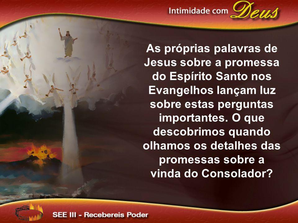 As próprias palavras de Jesus sobre a promessa do Espírito Santo nos Evangelhos lançam luz sobre estas perguntas importantes. O que descobrimos quando