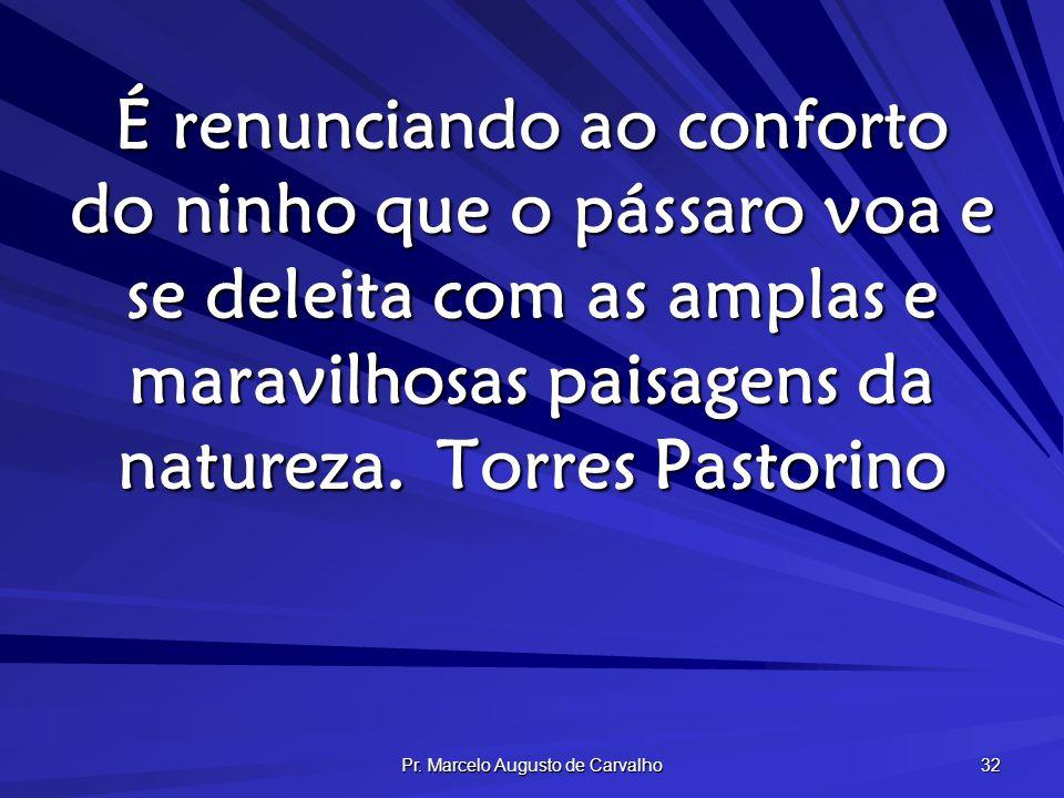 Pr. Marcelo Augusto de Carvalho 32 É renunciando ao conforto do ninho que o pássaro voa e se deleita com as amplas e maravilhosas paisagens da naturez