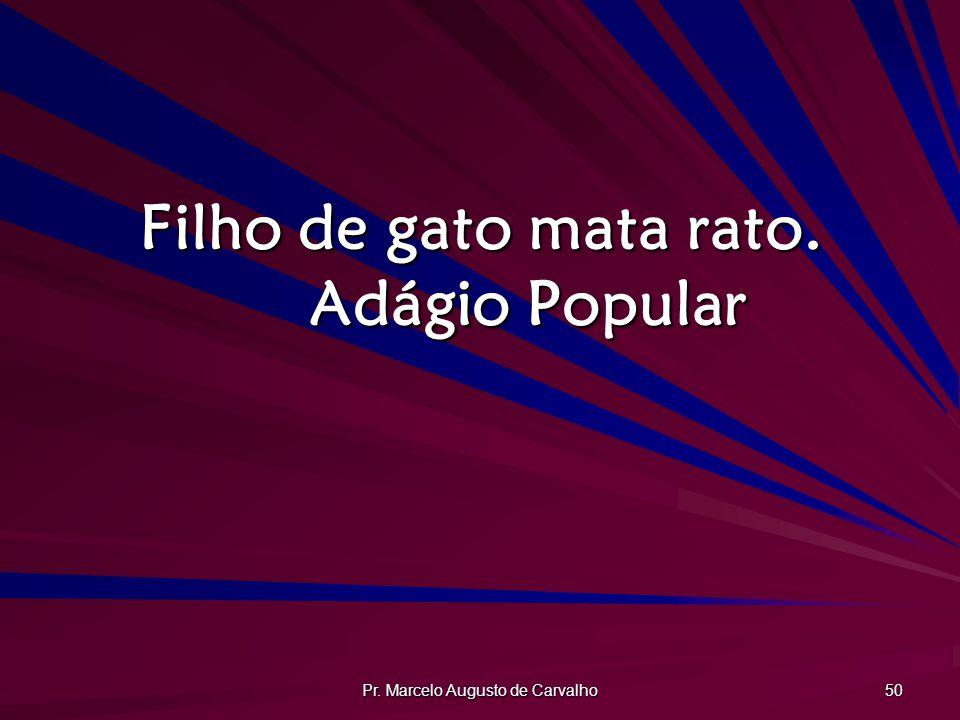 Pr. Marcelo Augusto de Carvalho 50 Filho de gato mata rato. Adágio Popular