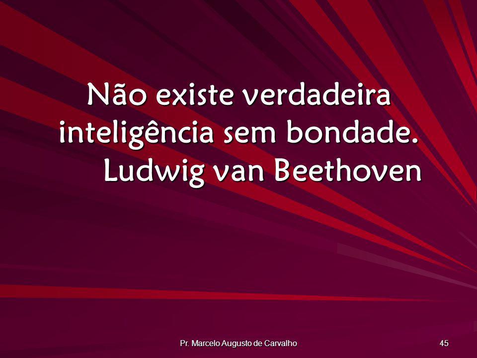 Pr. Marcelo Augusto de Carvalho 45 Não existe verdadeira inteligência sem bondade. Ludwig van Beethoven