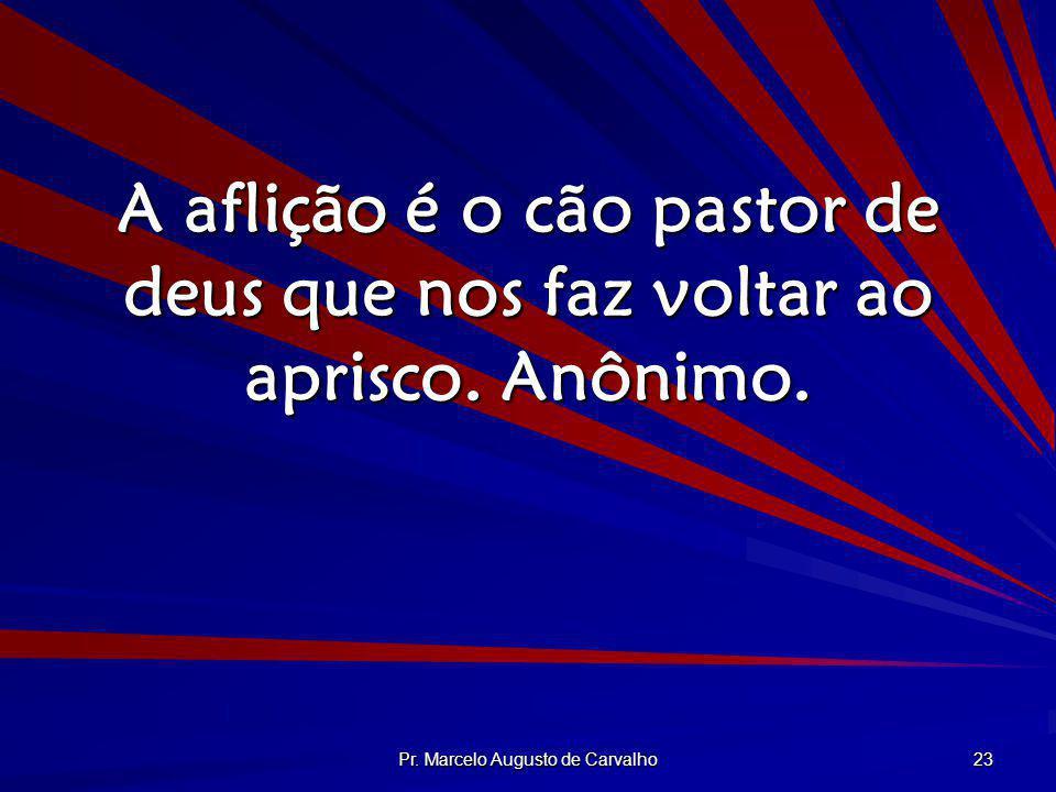 Pr. Marcelo Augusto de Carvalho 23 A aflição é o cão pastor de deus que nos faz voltar ao aprisco. Anônimo.