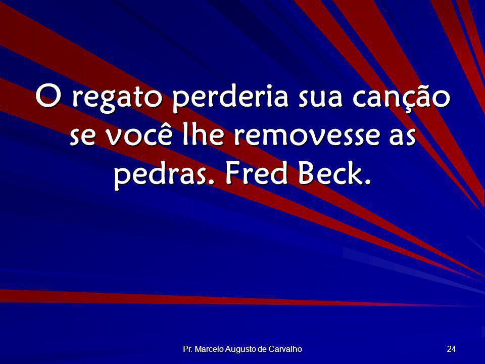 Pr. Marcelo Augusto de Carvalho 24 O regato perderia sua canção se você lhe removesse as pedras. Fred Beck.