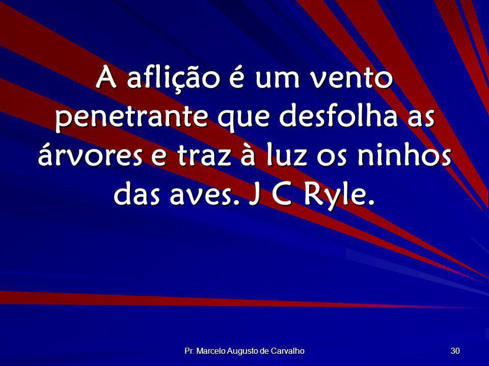 Pr. Marcelo Augusto de Carvalho 30 A aflição é um vento penetrante que desfolha as árvores e traz à luz os ninhos das aves. J C Ryle.