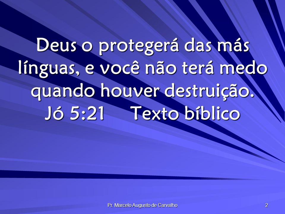 Pr.Marcelo Augusto de Carvalho 13 A maledicência é ocupação e lenitivo para os descontentes.