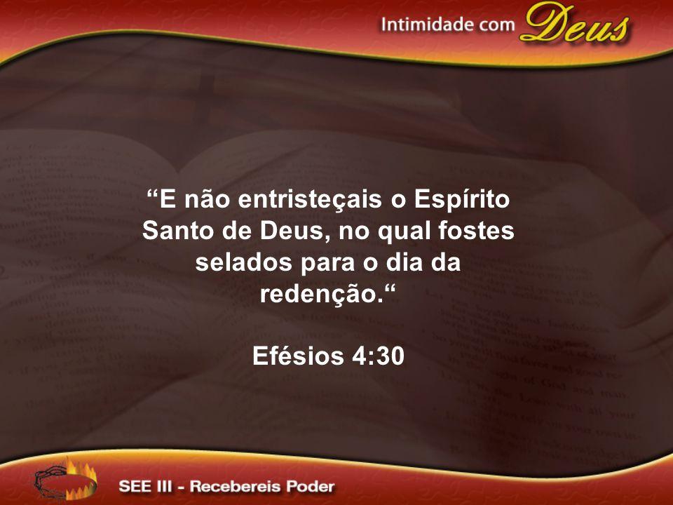 E não entristeçais o Espírito Santo de Deus, no qual fostes selados para o dia da redenção. Efésios 4:30