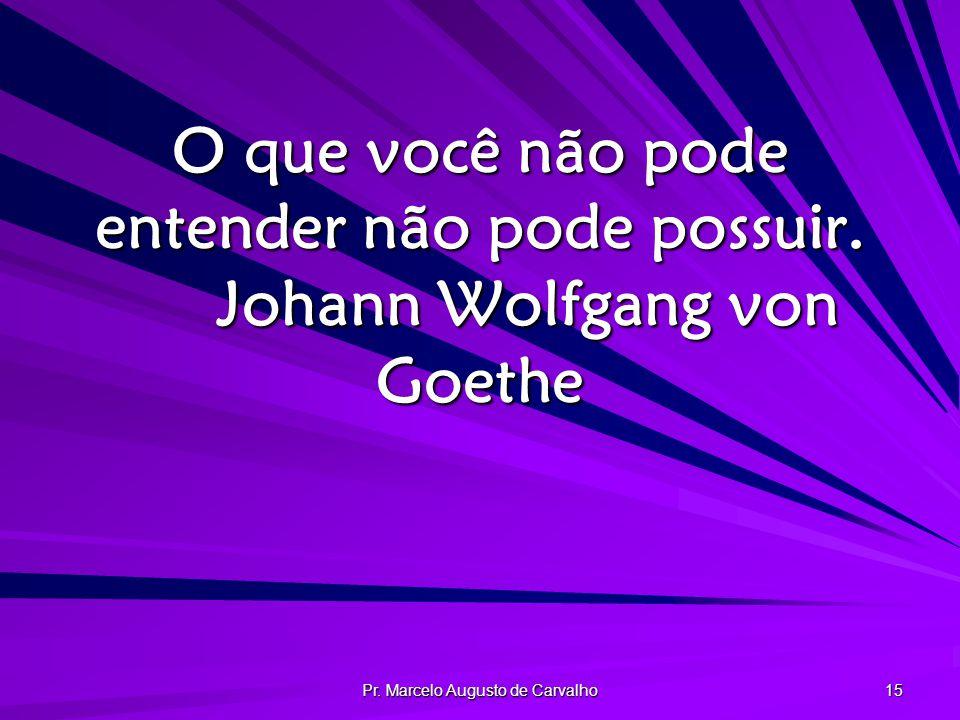 Pr.Marcelo Augusto de Carvalho 15 O que você não pode entender não pode possuir.