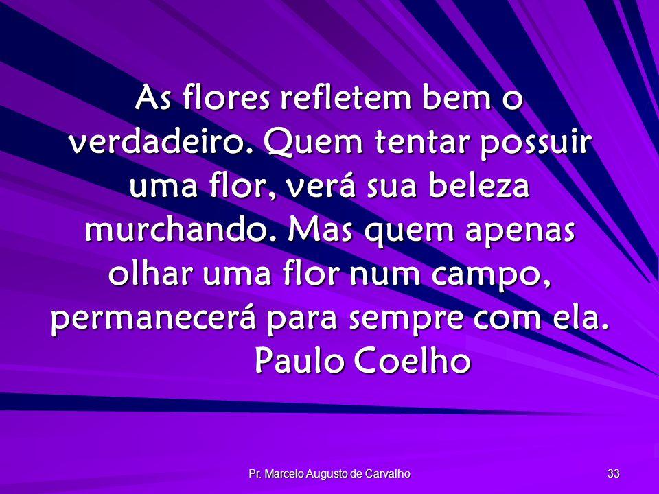 Pr.Marcelo Augusto de Carvalho 33 As flores refletem bem o verdadeiro.