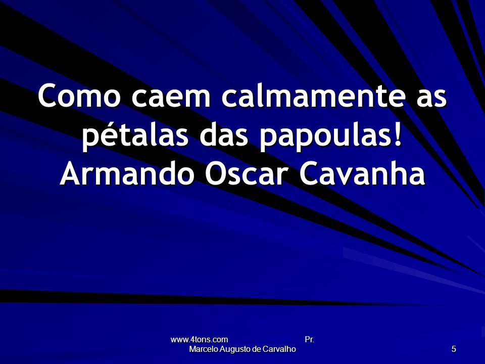 www.4tons.com Pr.Marcelo Augusto de Carvalho 5 Como caem calmamente as pétalas das papoulas.