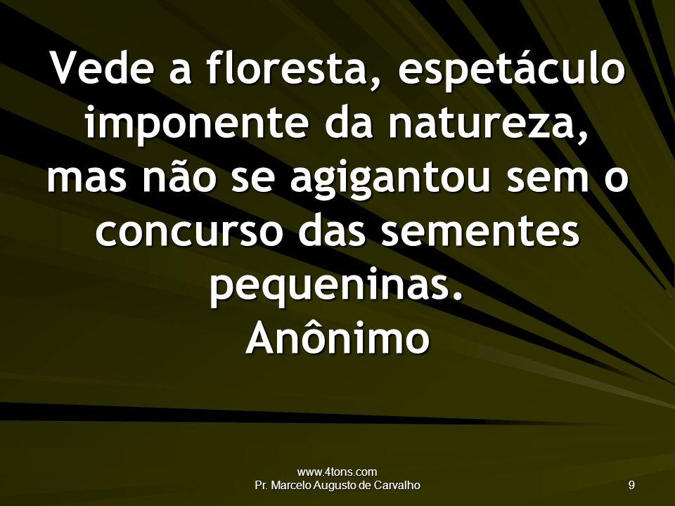 www.4tons.com Pr. Marcelo Augusto de Carvalho 9 Vede a floresta, espetáculo imponente da natureza, mas não se agigantou sem o concurso das sementes pe