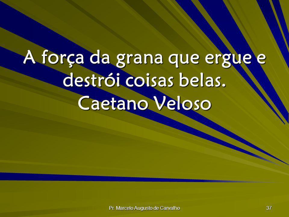 Pr. Marcelo Augusto de Carvalho 37 A força da grana que ergue e destrói coisas belas. Caetano Veloso