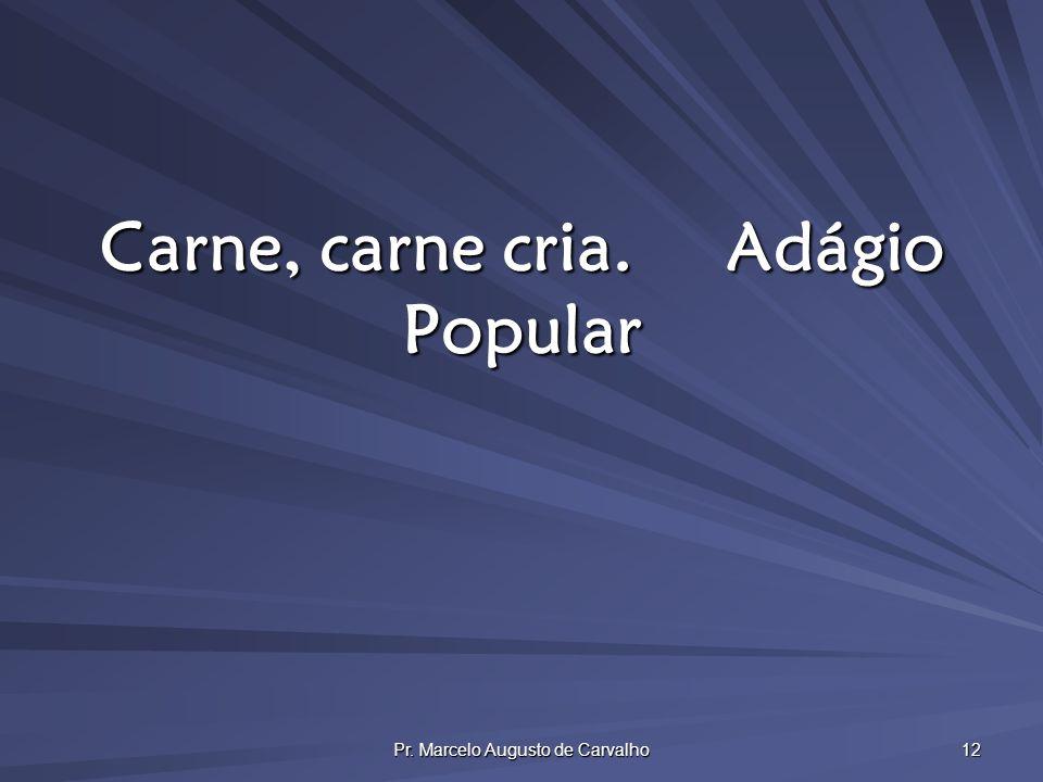 Pr. Marcelo Augusto de Carvalho 12 Carne, carne cria.Adágio Popular