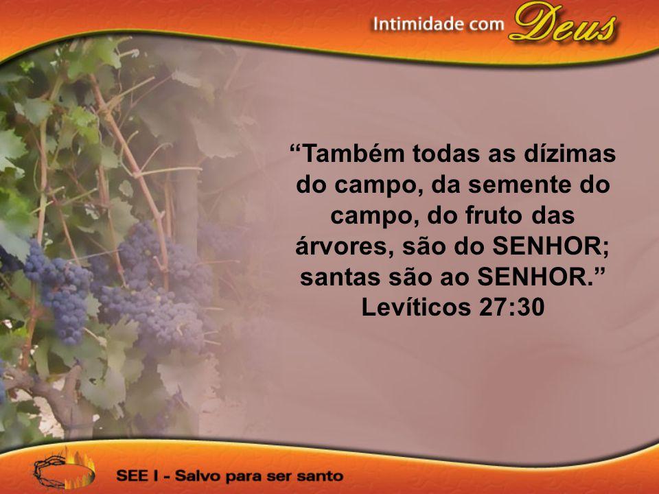 Também todas as dízimas do campo, da semente do campo, do fruto das árvores, são do SENHOR; santas são ao SENHOR. Levíticos 27:30