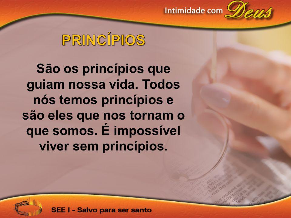 São os princípios que guiam nossa vida. Todos nós temos princípios e são eles que nos tornam o que somos. É impossível viver sem princípios.