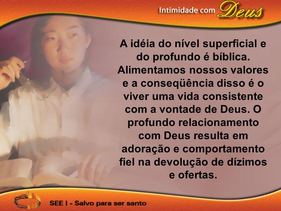A idéia do nível superficial e do profundo é bíblica. Alimentamos nossos valores e a conseqüência disso é o viver uma vida consistente com a vontade d