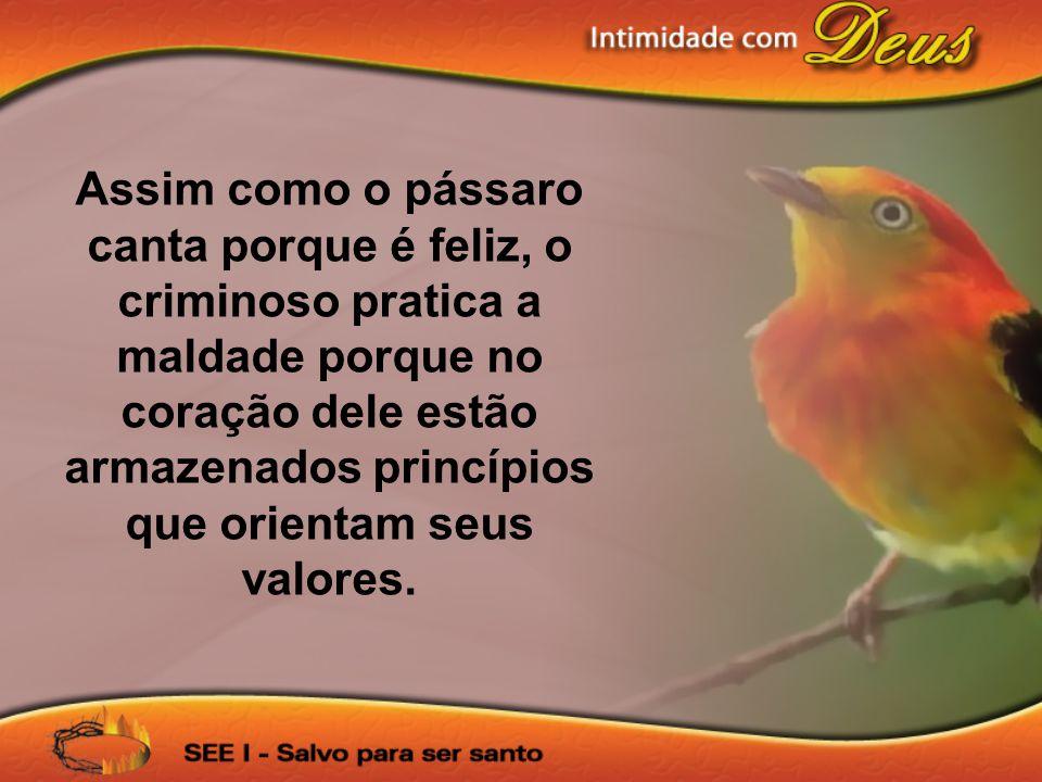 Assim como o pássaro canta porque é feliz, o criminoso pratica a maldade porque no coração dele estão armazenados princípios que orientam seus valores