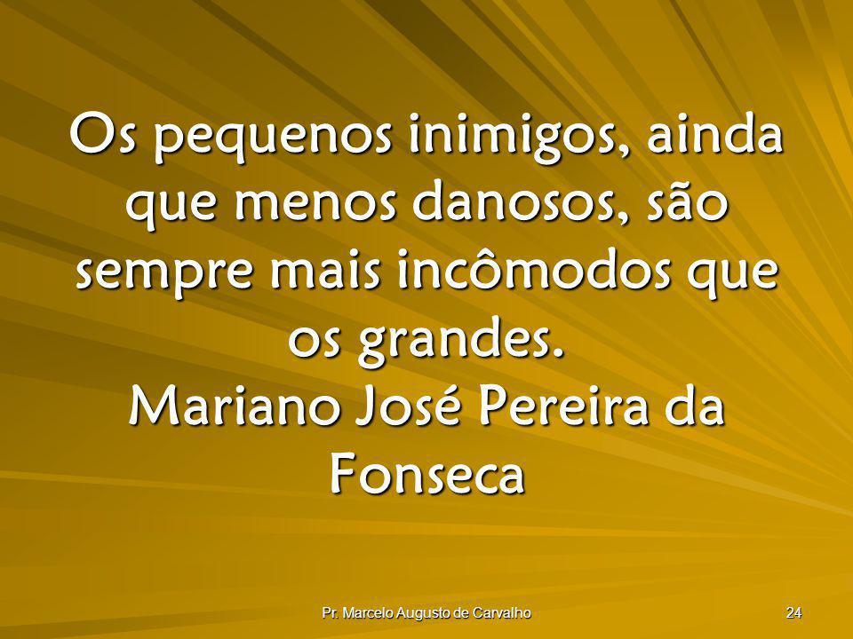 Pr. Marcelo Augusto de Carvalho 24 Os pequenos inimigos, ainda que menos danosos, são sempre mais incômodos que os grandes. Mariano José Pereira da Fo