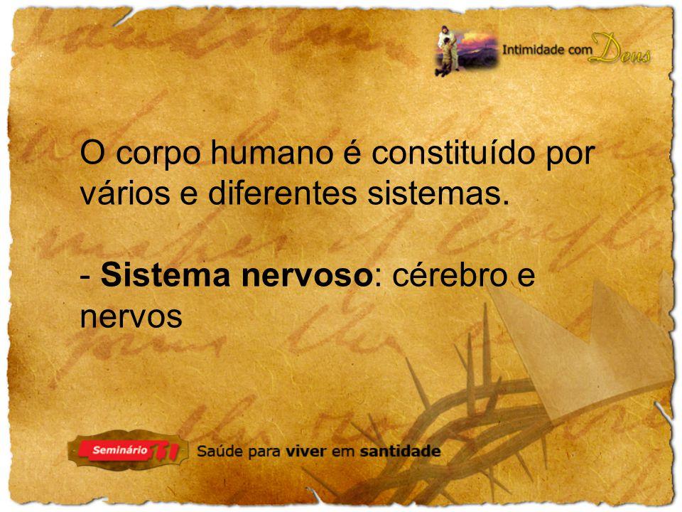 - Sistema nervoso: cérebro e nervos