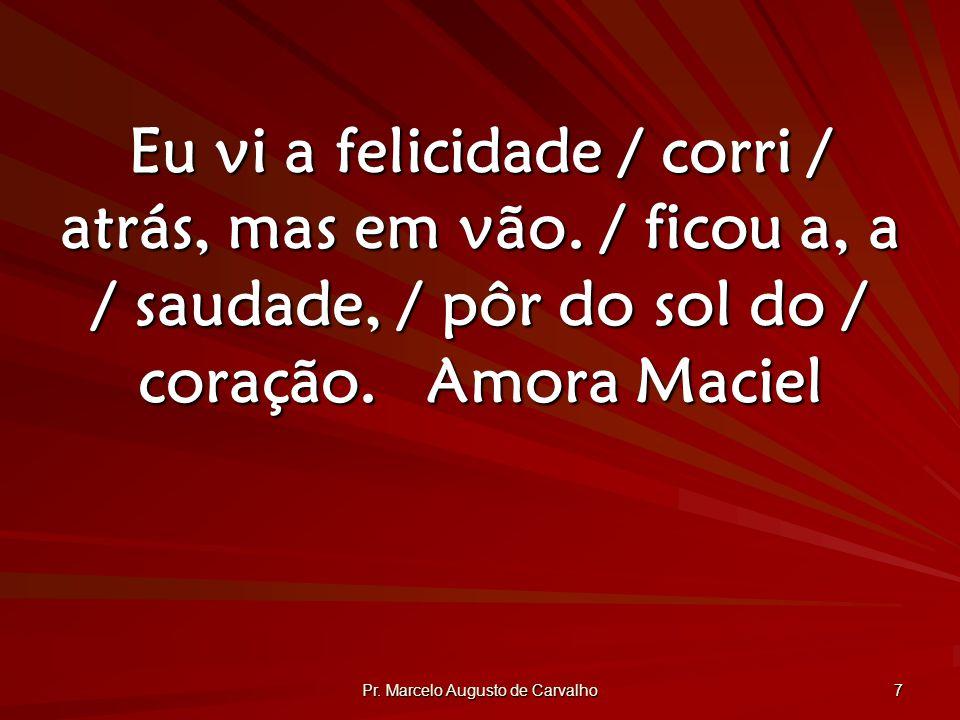 Pr.Marcelo Augusto de Carvalho 7 Eu vi a felicidade / corri / atrás, mas em vão.