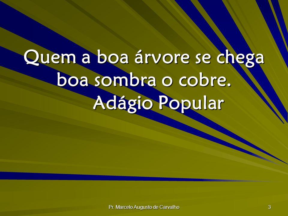 Pr. Marcelo Augusto de Carvalho 3 Quem a boa árvore se chega boa sombra o cobre. Adágio Popular