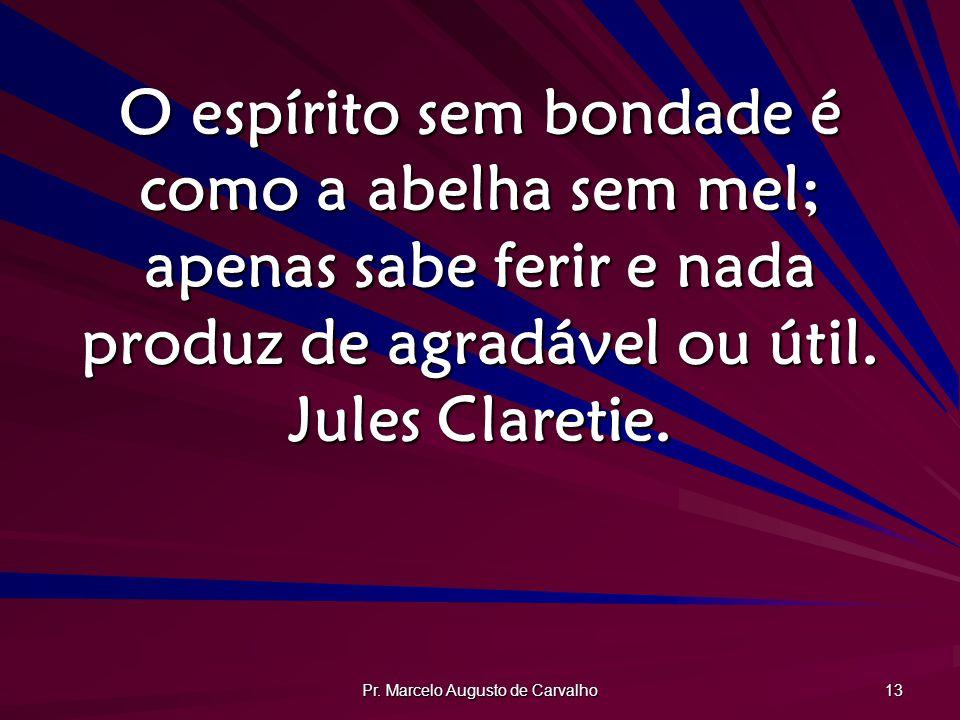 Pr. Marcelo Augusto de Carvalho 13 O espírito sem bondade é como a abelha sem mel; apenas sabe ferir e nada produz de agradável ou útil. Jules Clareti