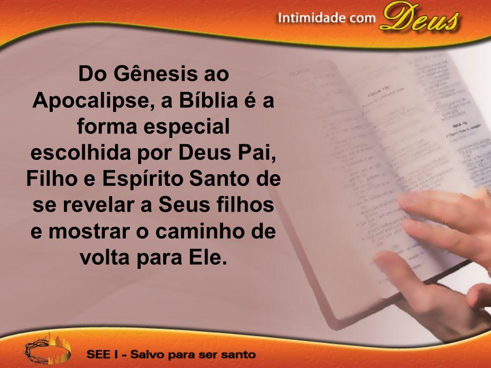Do Gênesis ao Apocalipse, a Bíblia é a forma especial escolhida por Deus Pai, Filho e Espírito Santo de se revelar a Seus filhos e mostrar o caminho d