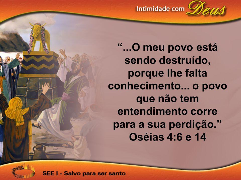 ...O meu povo está sendo destruído, porque lhe falta conhecimento... o povo que não tem entendimento corre para a sua perdição. Oséias 4:6 e 14