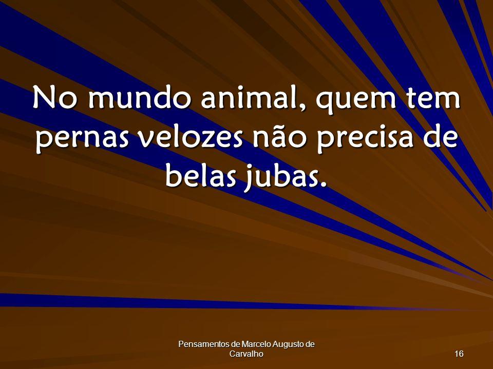 Pensamentos de Marcelo Augusto de Carvalho 16 No mundo animal, quem tem pernas velozes não precisa de belas jubas.