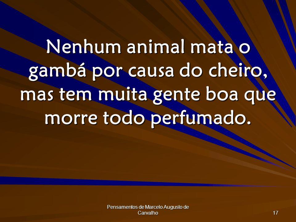 Pensamentos de Marcelo Augusto de Carvalho 17 Nenhum animal mata o gambá por causa do cheiro, mas tem muita gente boa que morre todo perfumado.
