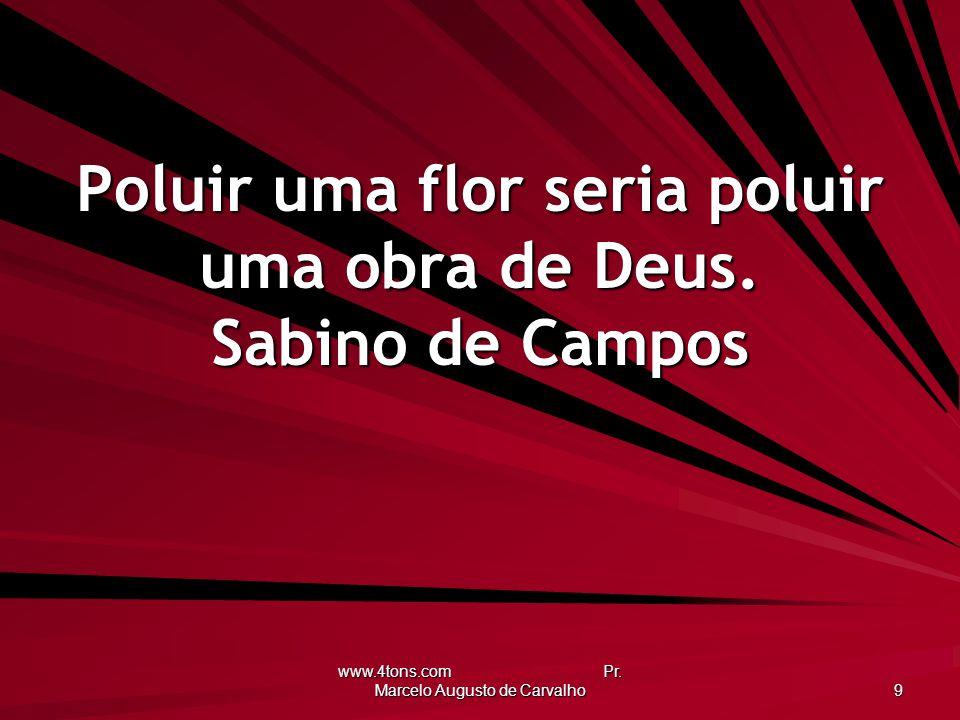 www.4tons.com Pr. Marcelo Augusto de Carvalho 9 Poluir uma flor seria poluir uma obra de Deus. Sabino de Campos