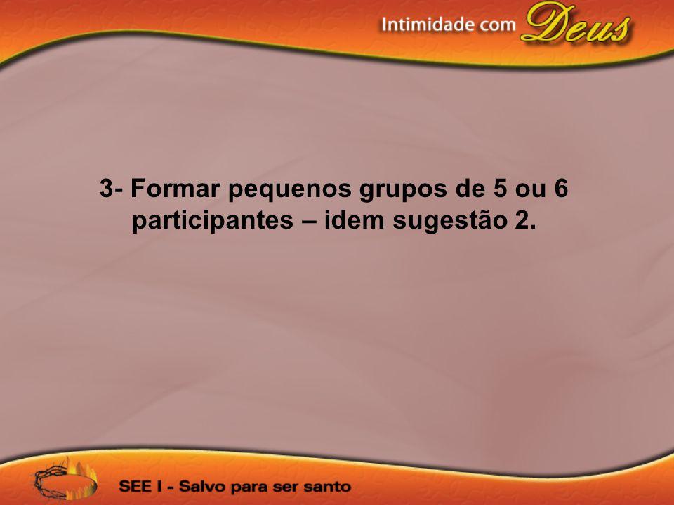 3- Formar pequenos grupos de 5 ou 6 participantes – idem sugestão 2.