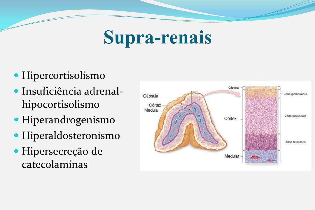 Supra-renais Hipercortisolismo Insuficiência adrenal- hipocortisolismo Hiperandrogenismo Hiperaldosteronismo Hipersecreção de catecolaminas