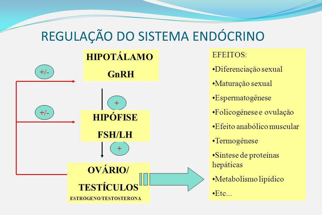 REGULAÇÃO DO SISTEMA ENDÓCRINO +/- + + OVÁRIO/ TESTÍCULOS ESTRÓGENO/TESTOSTERONA HIPÓFISE FSH/LH HIPOTÁLAMO GnRH EFEITOS: Diferenciação sexual Maturação sexual Espermatogênese Folicogênese e ovulação Efeito anabólico muscular Termogênese Síntese de proteínas hepáticas Metabolismo lipídico Etc...