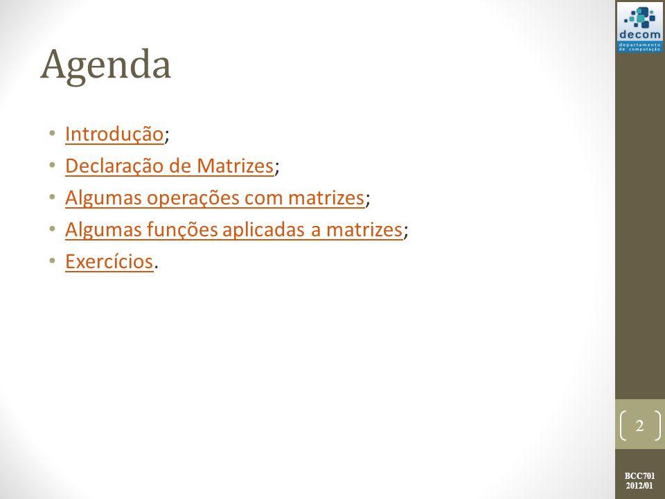 BCC701 2012/01 INTRODUÇÃO Introdução; Declaração de matrizes; Algumas operações com matrizes; Algumas funções aplicadas a matrizes; Exercícios.