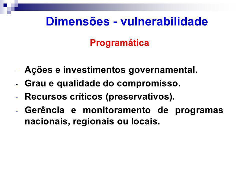 Programática - Ações e investimentos governamental.