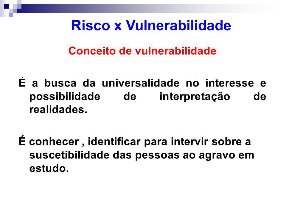Conceito de vulnerabilidade É a busca da universalidade no interesse e possibilidade de interpretação de realidades.