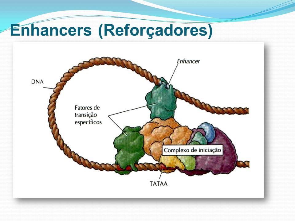 Enhancers (Reforçadores)