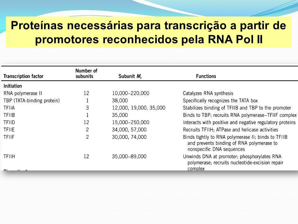 Proteínas necessárias para transcrição a partir de promotores reconhecidos pela RNA Pol II