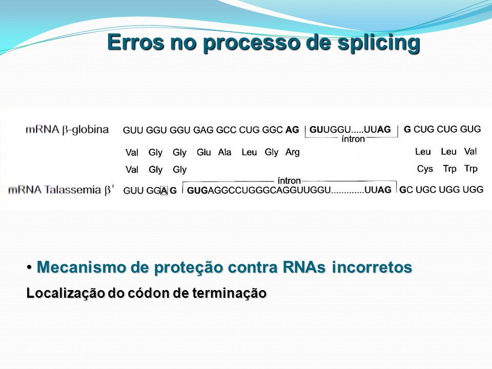 Erros no processo de splicing Mecanismo de proteção contra RNAs incorretos Mecanismo de proteção contra RNAs incorretos Localização do códon de termin