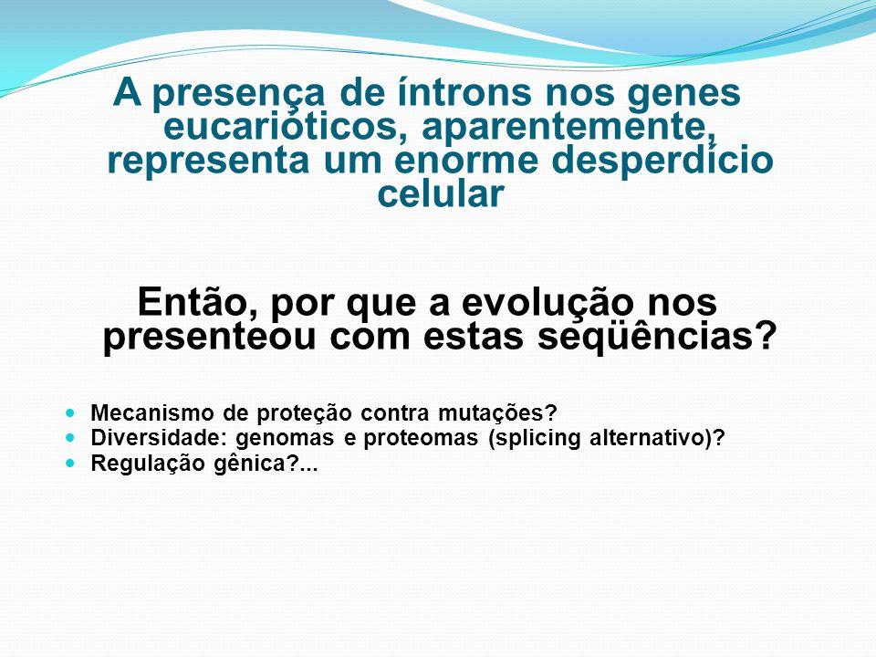A presença de íntrons nos genes eucarióticos, aparentemente, representa um enorme desperdício celular Então, por que a evolução nos presenteou com est